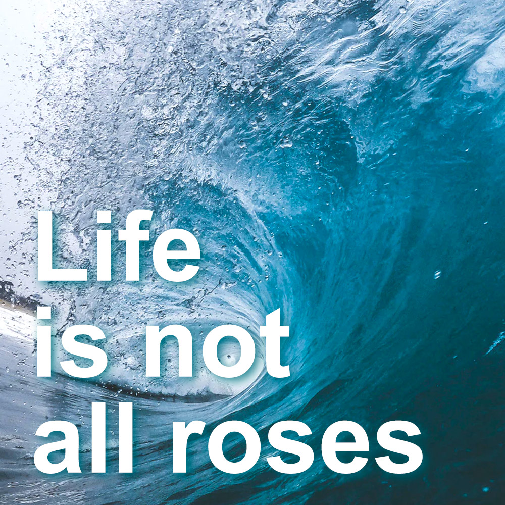 Life is not all roses
